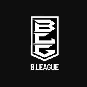 【Bリーグ2017-18】入れ替え戦のテレビ放送予定!ネットライブ配信は?