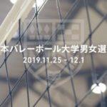 インカレバレー2019のテレビ放送・ライブ配信予定!無料視聴方法は?